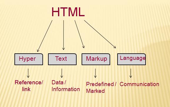 HTML新手教程