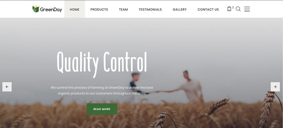 Digimint - 商业服务类HTML登陆页面模板